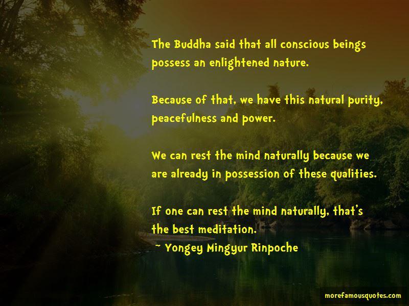 Best Mind Power Quotes