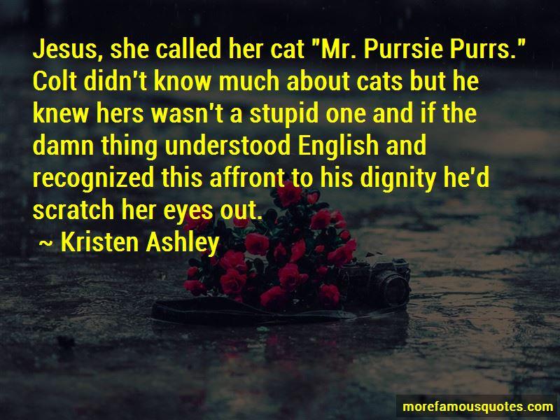 Cat Scratch Quotes Pictures 4