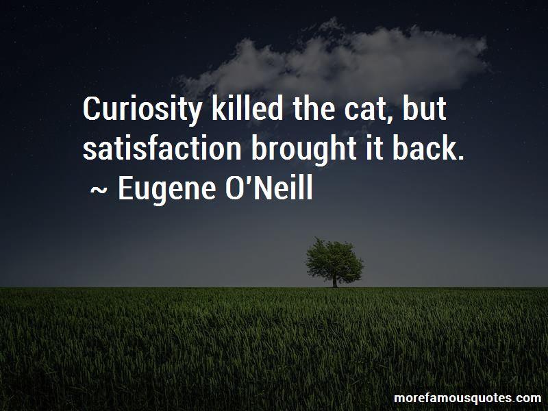 Curiosity Killed Cat Quotes Pictures 2