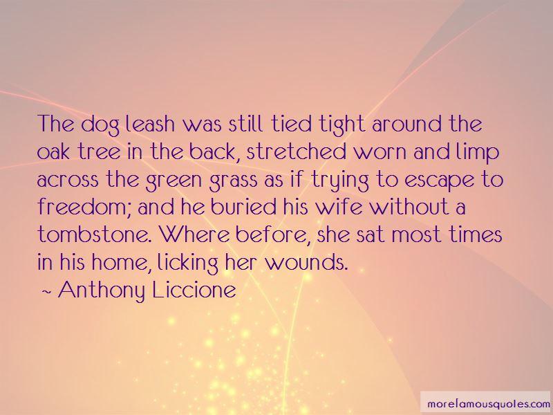 Dog Leash Quotes
