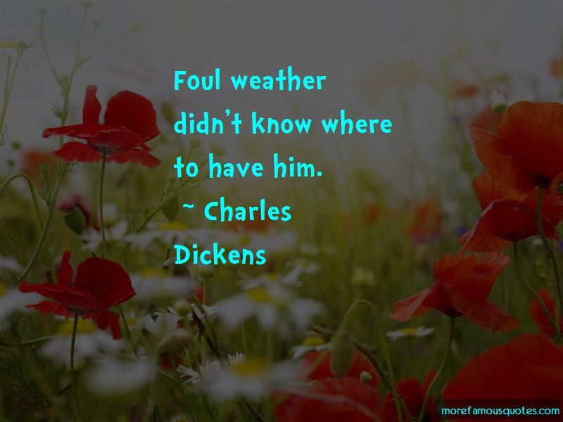 Foul Weather Quotes Pictures 4