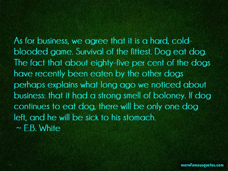 My Dog Is Sick Quotes