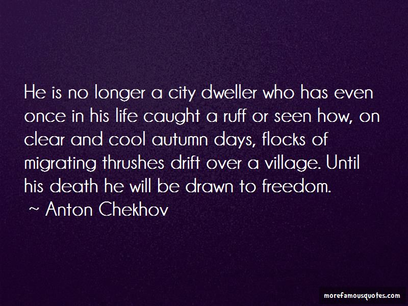 Ruff Life Quotes