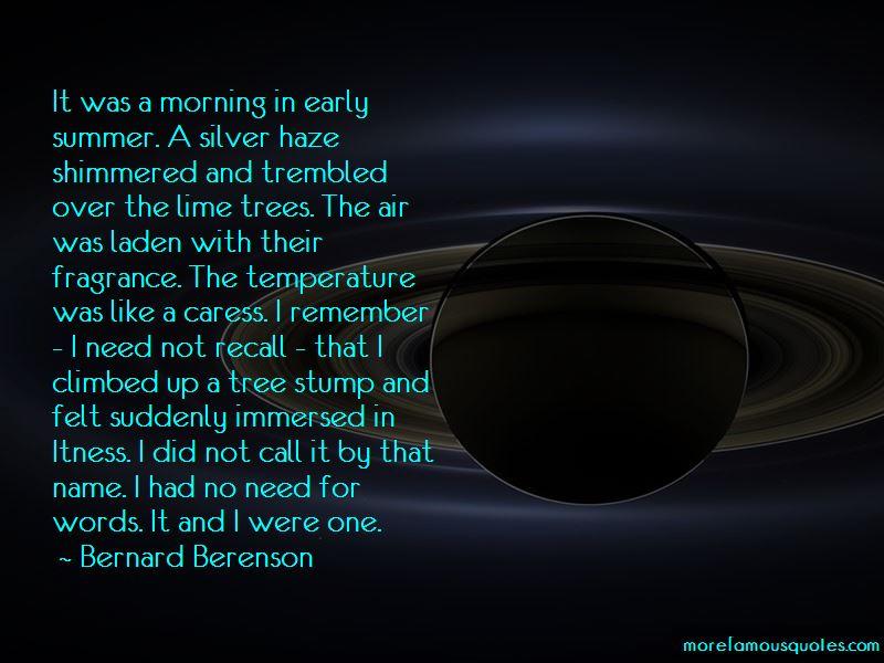 Tree Stump Quotes Pictures 2