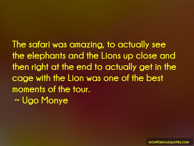 3 Lions Best Quotes