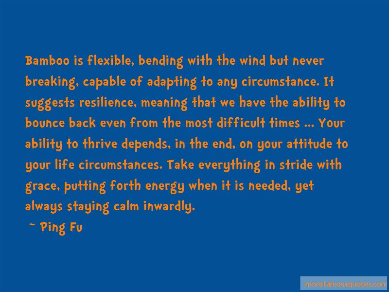 Bamboo Life Quotes