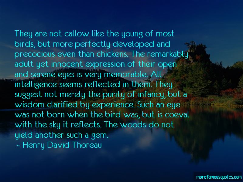 Callow Quotes Pictures 3