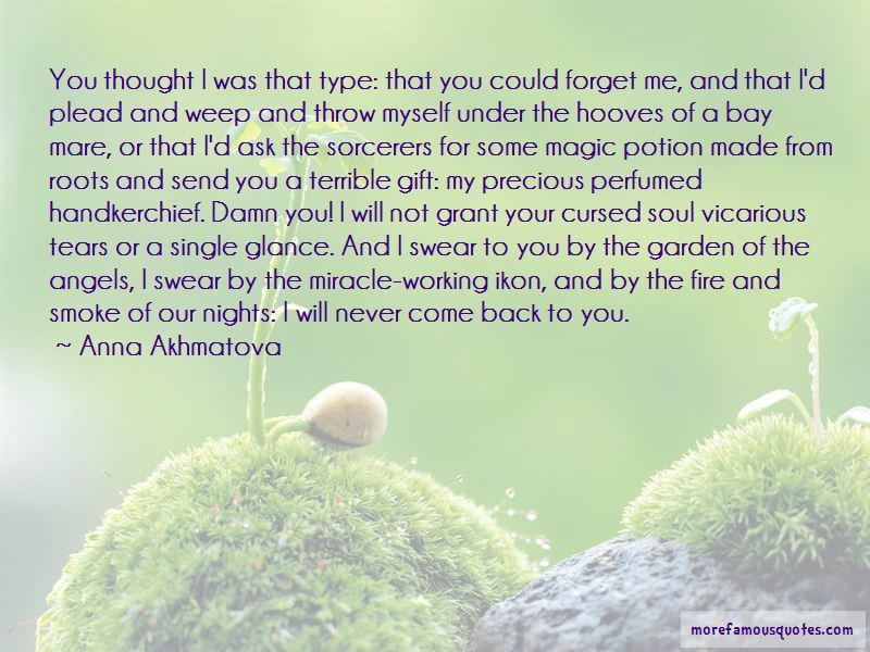 I Will Never Come Back To You Quotes