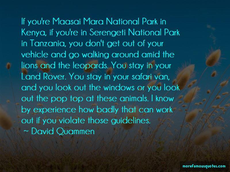 Kenya Safari Quotes