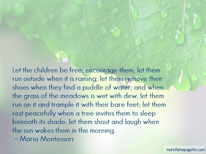 Morning Raining Quotes