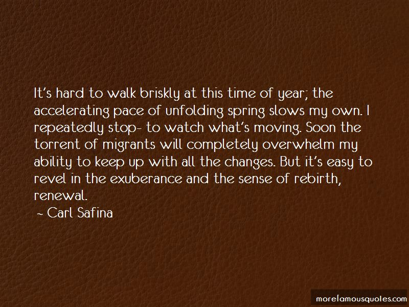 Spring Rebirth Renewal Quotes