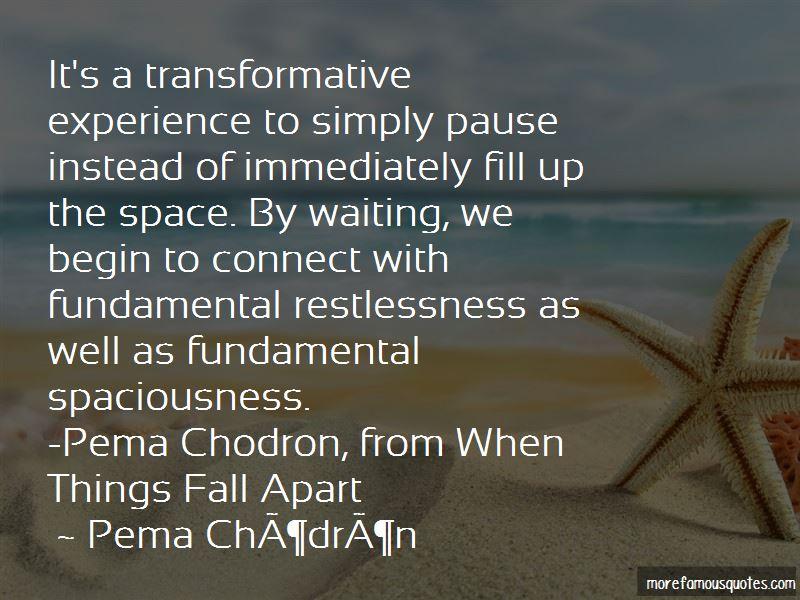 Chodron Quotes