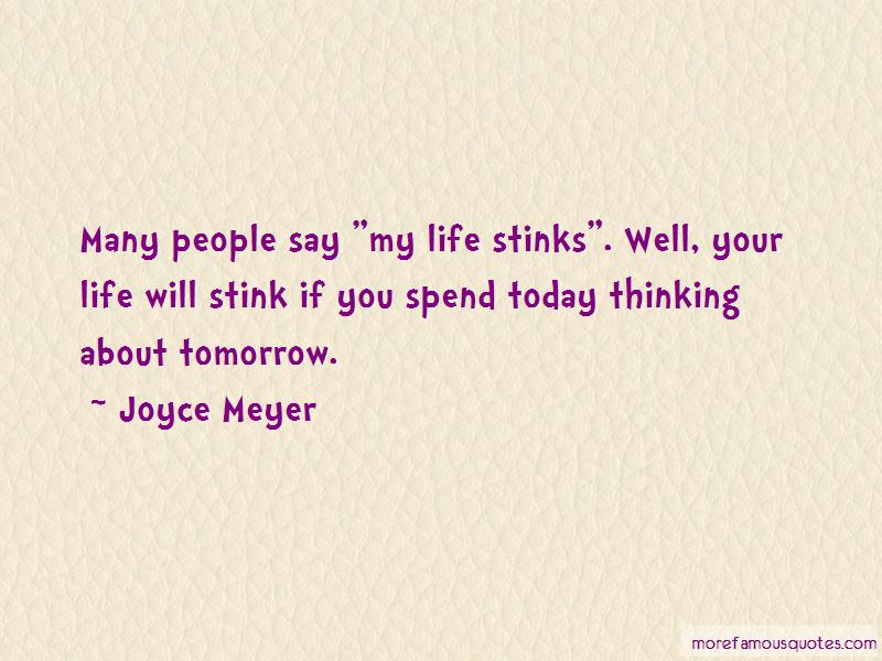 My Life Stinks Quotes