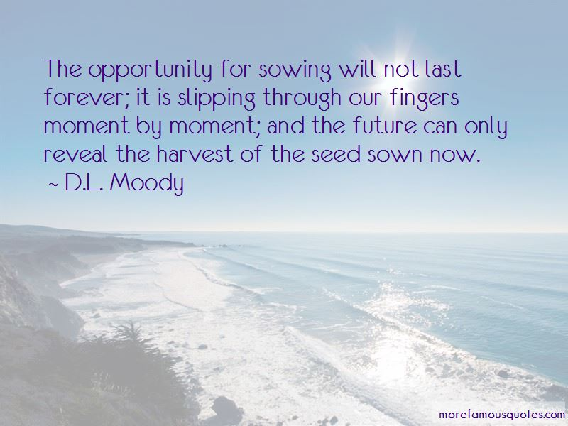 Seed Sown Quotes Pictures 3