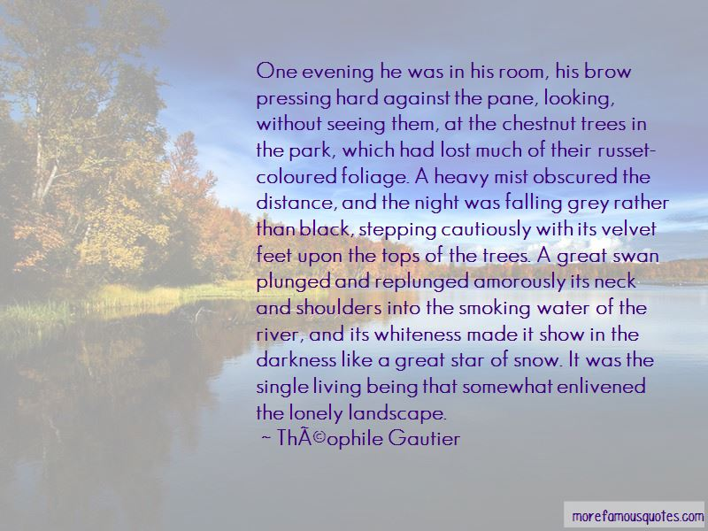 Velvet Room Quotes Pictures 3