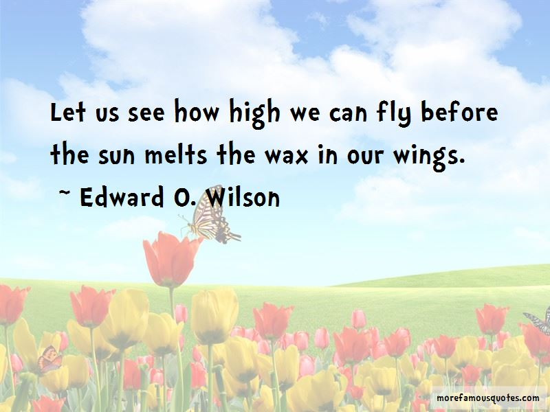 We Can Fly Quotes Pictures 2