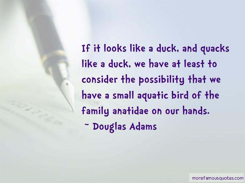 Anatidae Quotes Pictures 2
