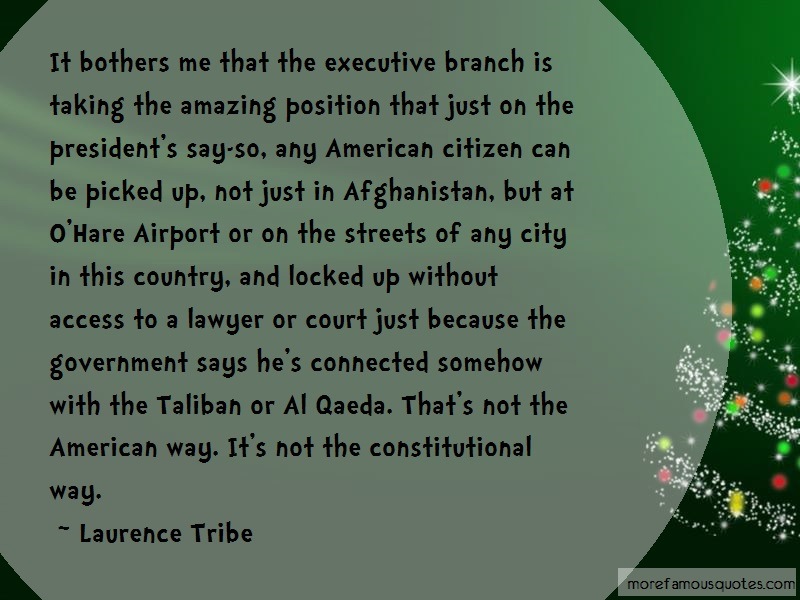 Laurence Tribe Quotes: It Bothers Me That The Executive Branch