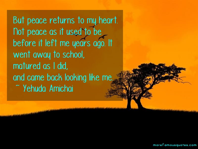 Yehuda Amichai Quotes: But peace returns to my heart not peace