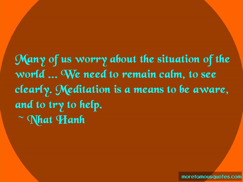 Nhat Hanh Quotes: Many of us worry about the situation of