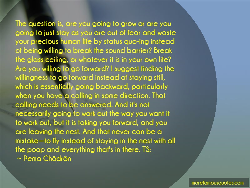Deirdre Blomfield Brown Quotes: The question is are you going to grow or