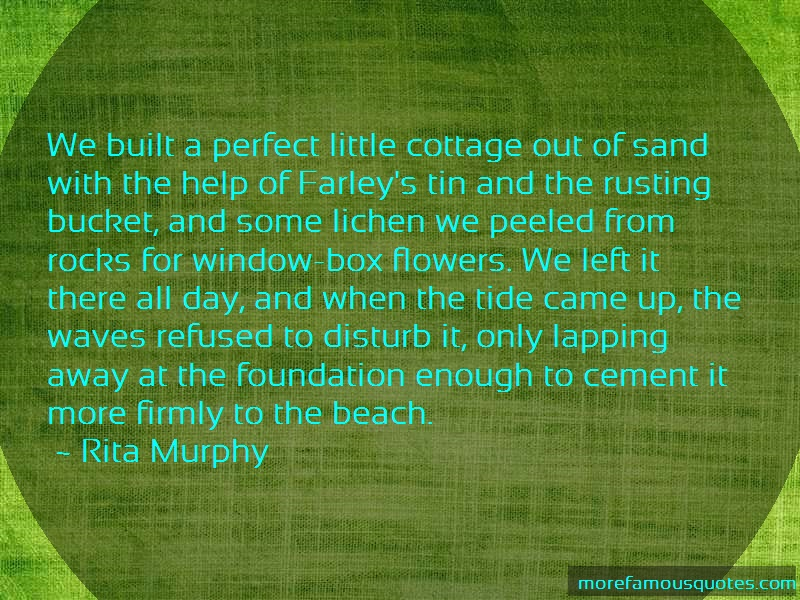 Rita Murphy Quotes: We Built A Perfect Little Cottage Out Of
