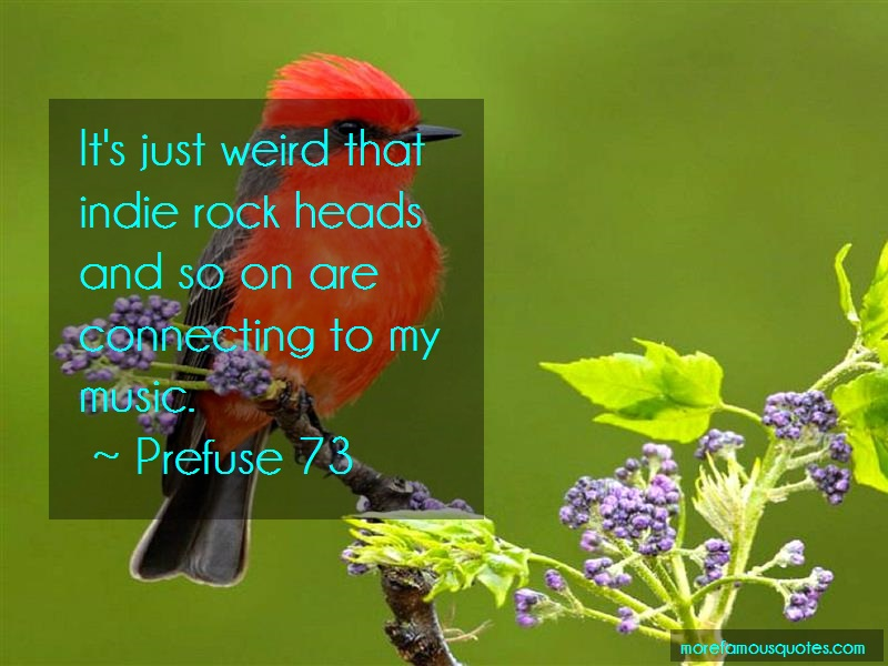 Prefuse 73 Quotes: Its just weird that indie rock heads and