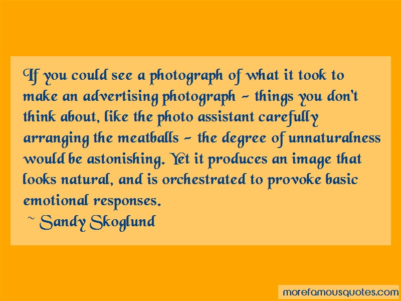 Sandy Skoglund Quotes: If you could see a photograph of what it