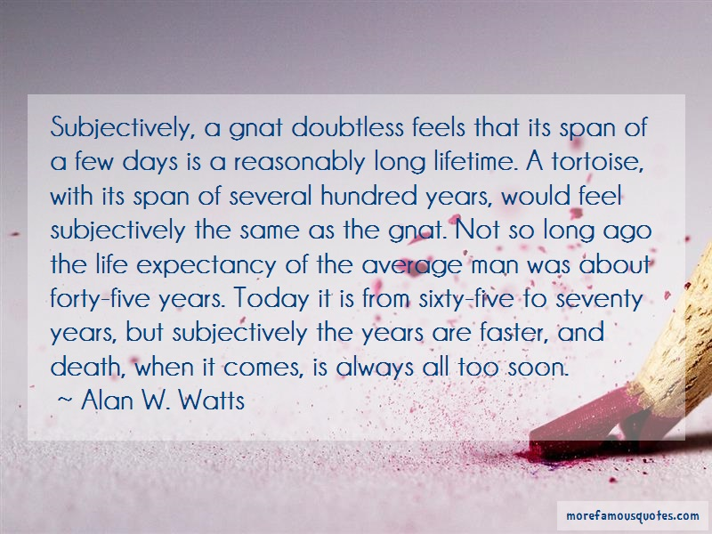 Alan W. Watts Quotes: Subjectively A Gnat Doubtless Feels That