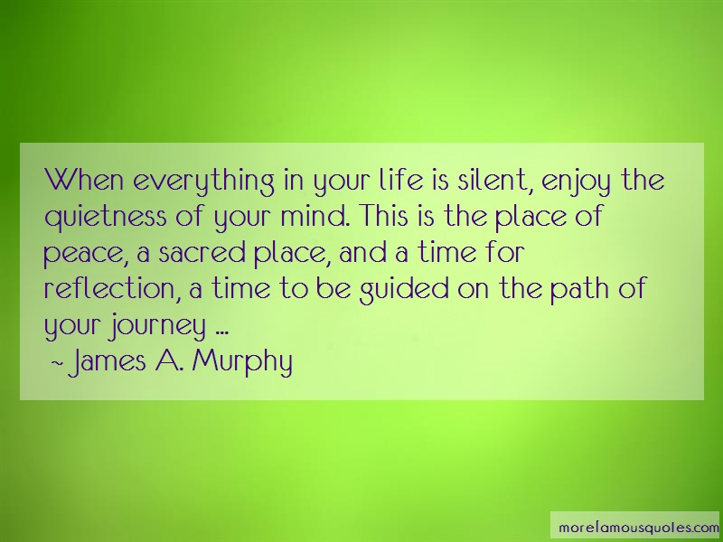 James A. Murphy Quotes: When everything in your life is silent