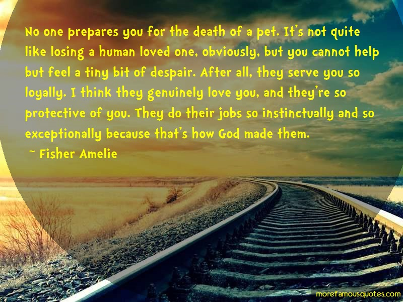 Fisher Amelie Quotes: No one prepares you for the death of a