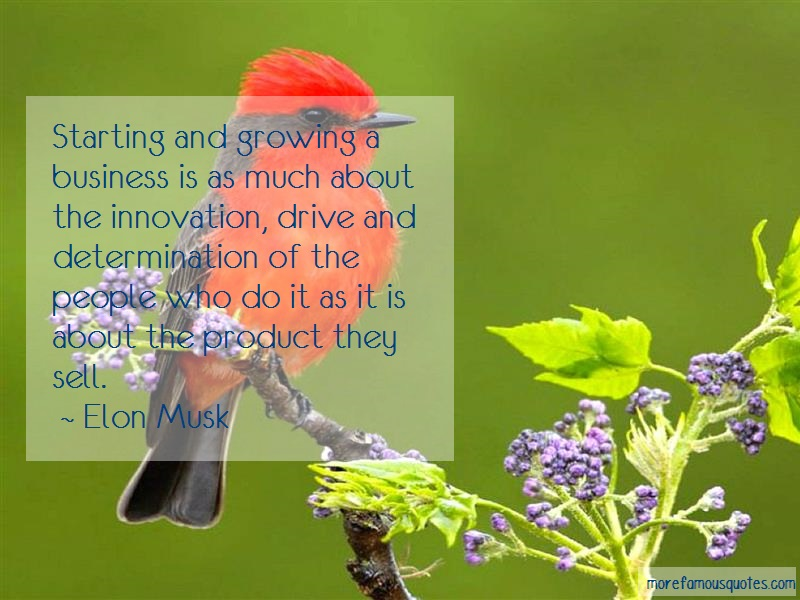 Elon Musk Quotes: Starting and growing a business is as