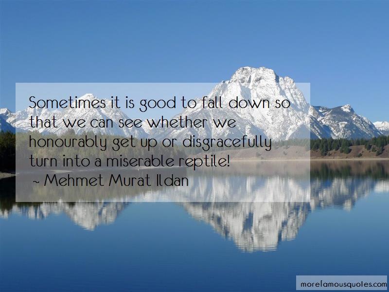 Mehmet Murat Ildan Quotes: Sometimes it is good to fall down so