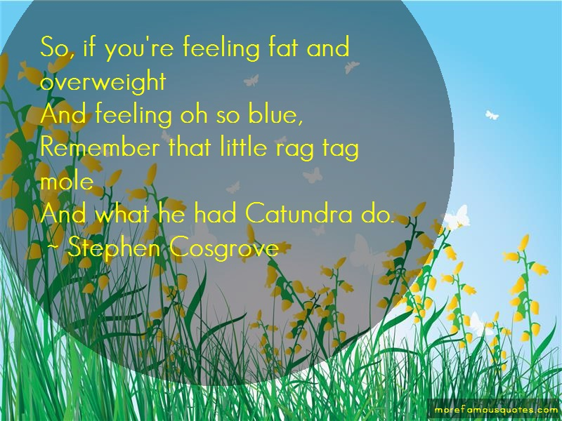Stephen Cosgrove Quotes: So If Youre Feeling Fat And
