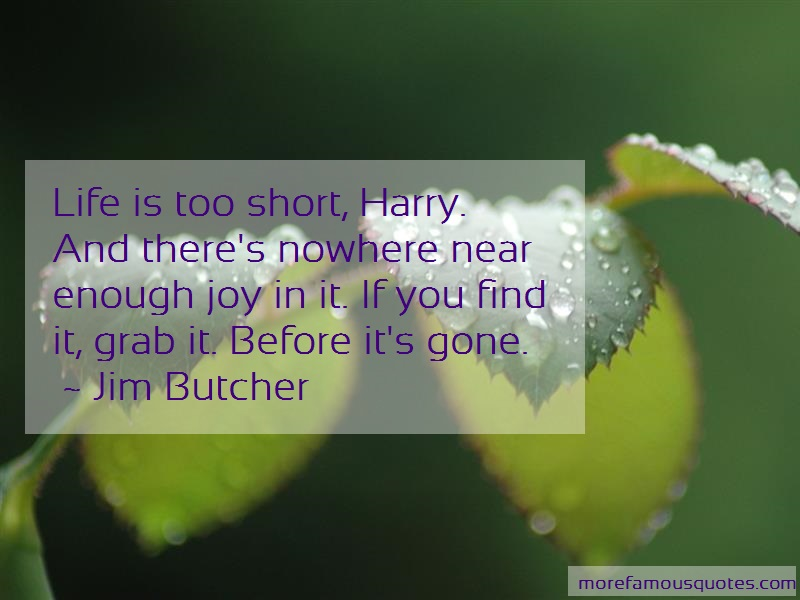 Jim Butcher Quotes: Life is too short harry and theres