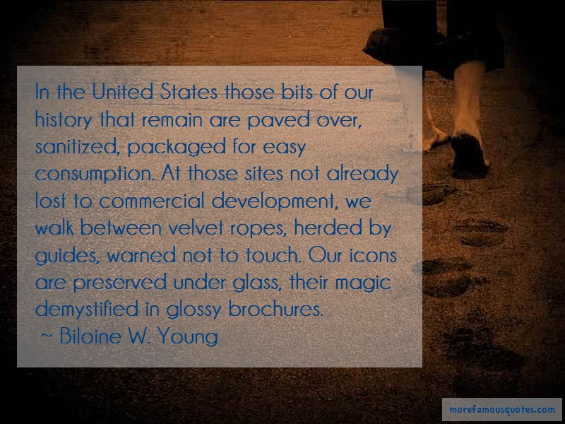 Biloine W. Young Quotes: In The United States Those Bits Of Our