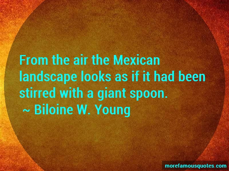 Biloine W. Young Quotes: From The Air The Mexican Landscape Looks