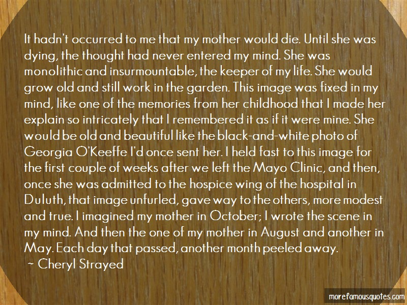 Cheryl Strayed Quotes: It hadnt occurred to me that my mother