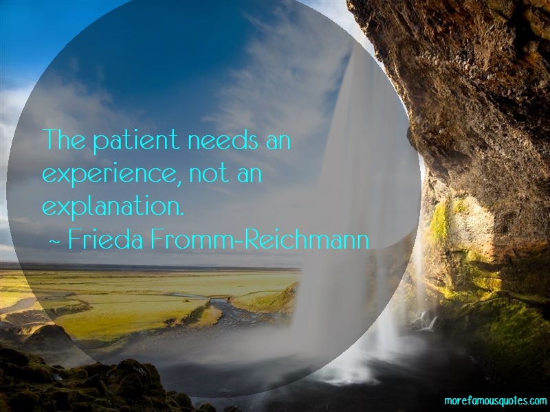 Frieda Fromm-Reichmann Quotes: The patient needs an experience not an