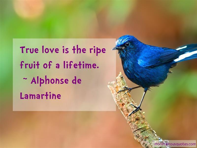 Alphonse De Lamartine Quotes: True love is the ripe fruit of a