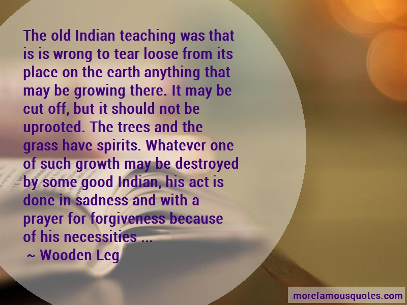Wooden Leg Quotes: The old indian teaching was that is is