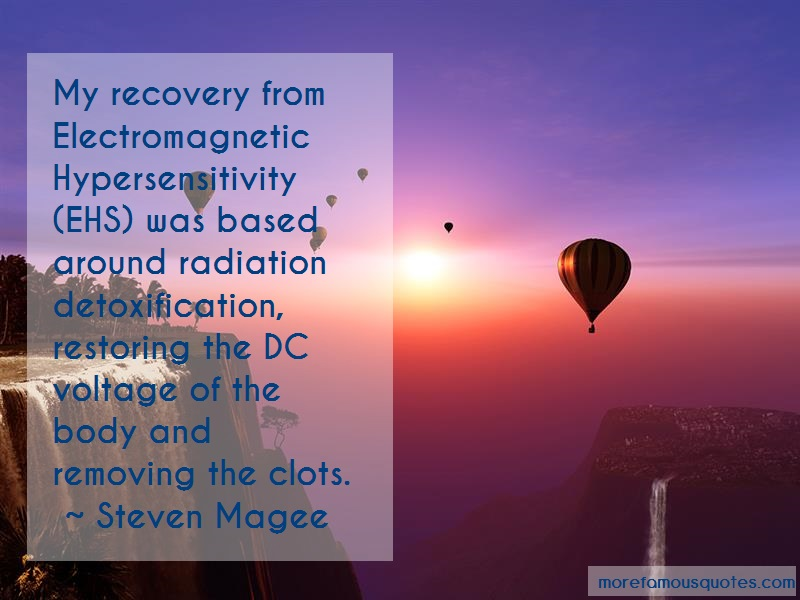 Steven Magee Quotes: My Recovery From Electromagnetic