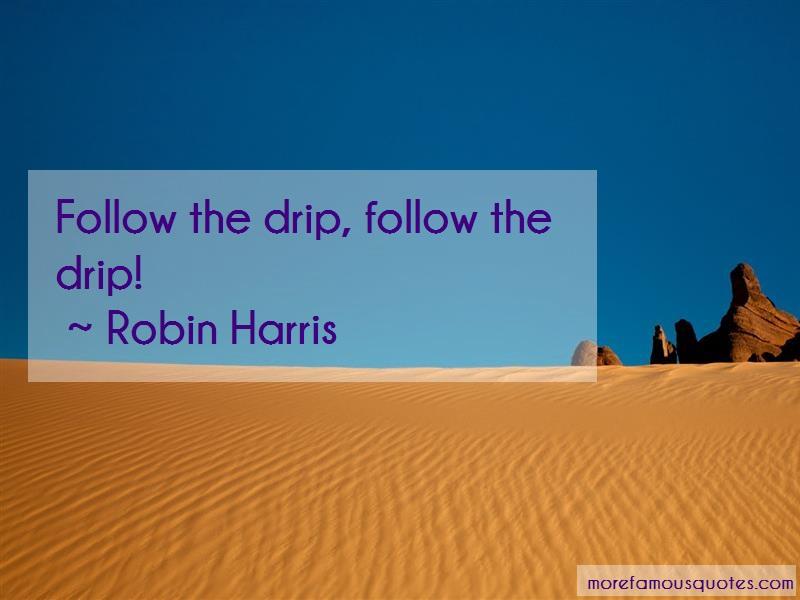 Robin Harris Quotes: Follow The Drip Follow The Drip
