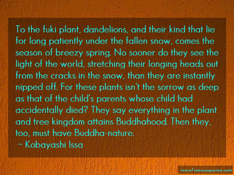 Kobayashi Issa Quotes: To the fuki plant dandelions and their