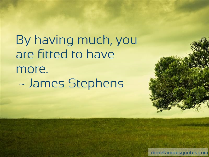 James Stephens Quotes: By having much you are fitted to have