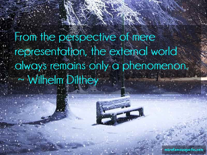 Wilhelm Dilthey Quotes: From The Perspective Of Mere