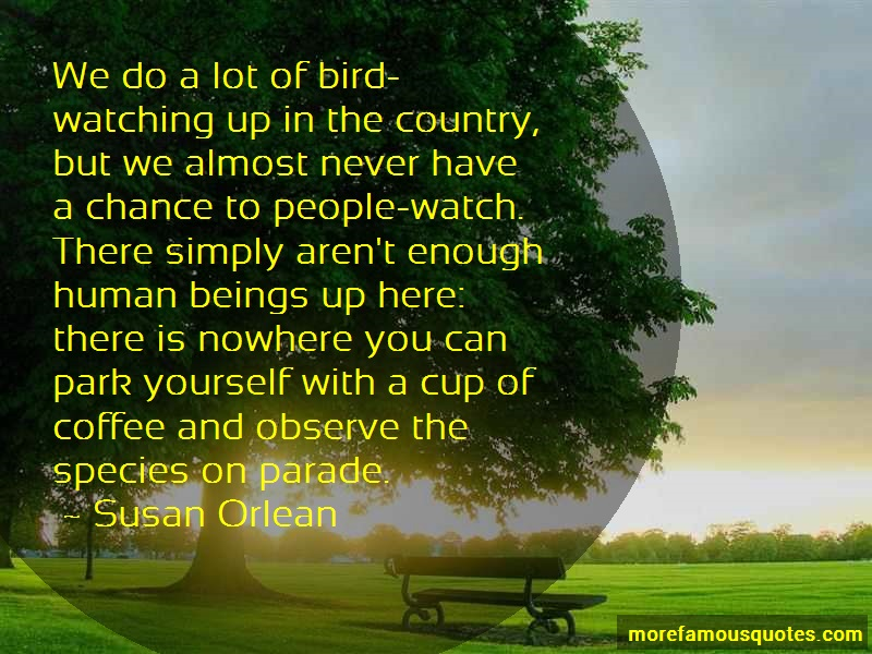 Susan Orlean Quotes: We do a lot of bird watching up in the