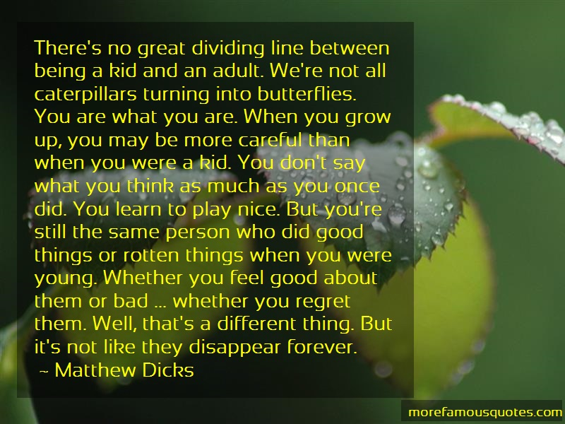 Matthew Dicks Quotes: Theres no great dividing line between