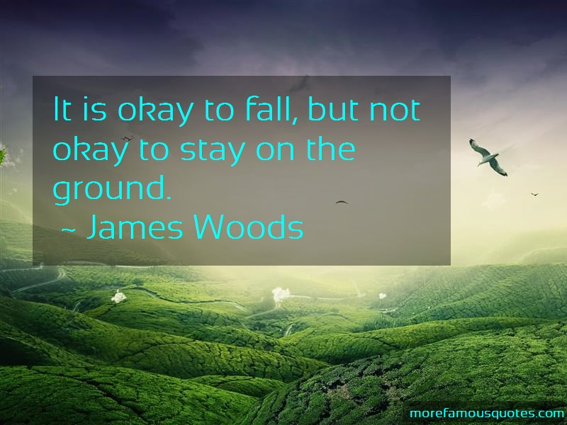 James Woods Quotes: It is okay to fall but not okay to stay