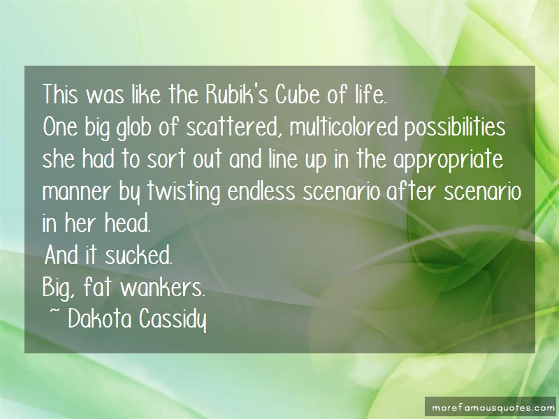 Dakota Cassidy Quotes: This was like the rubiks cube of life